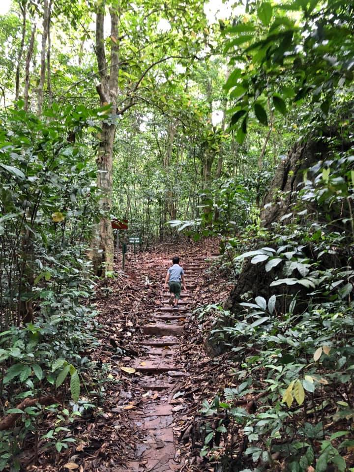 Trekking in Kim Giao Forest in Cat Ba Island