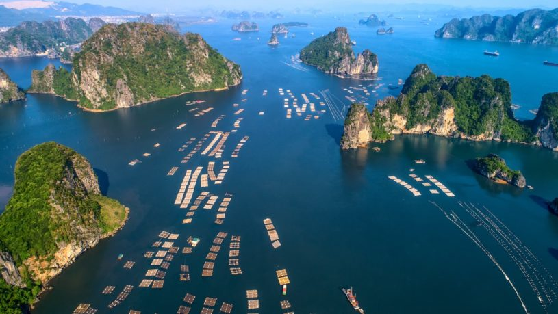 Halong Bay Vietnam Updated 2019
